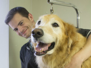 Pet groomer with dog at Kennelwood Pet Resorts