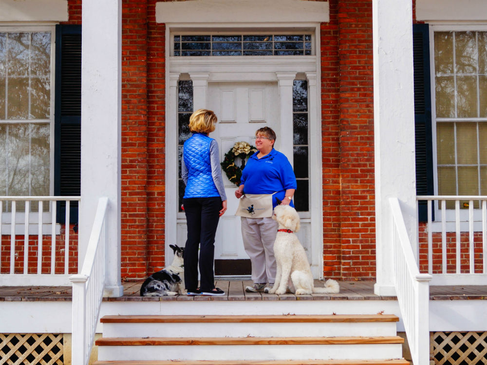 Dog Training Courses - In-Home Training from Kennelwood Pet Resorts